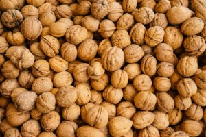 closeup photography of walnuts
