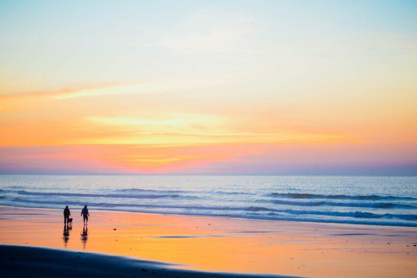 people walking near seashore during daytime